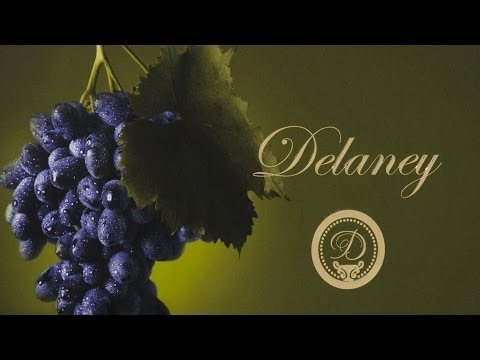 Delaney Wine and Cosmetic Display Packaging | Cool Custom Printing of the Week.