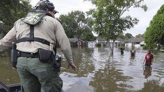 Immigrants Seeking Shelter after Hurricane Florence Fear Deportation as FEMA Shifts Funds to ICE