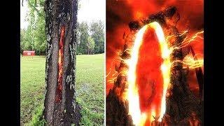 Thân cây rực lửa từ bên trong, ngỡ như lối vào cổng địa ngục