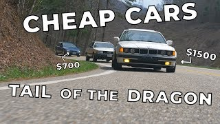 5 Cheap Cars Slay Tail of The Dragon // Winter Beater Challenge