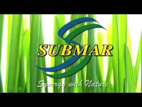 SUBMAR COMMERICAL