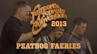 Peatbog Faeries   LIVE AT CROPREDY 2013