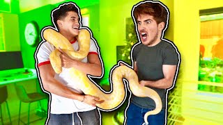 Gave Him CUTEST SURPRISE EVER! (ft Joey Graceffa)