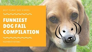 Funniest Dog Fail Compilation 2018  Funny Pet Videos
