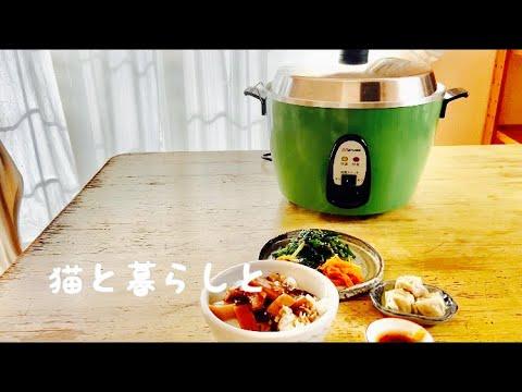 【暮らしを楽しむvlog】大同電鍋で色々作る/オムツ猫/甘酒とお灸でほっこり