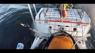 Almost sank my jetski in the ocean!