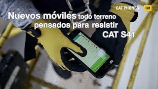 Video Cat S41 IXTNMt5zJVU