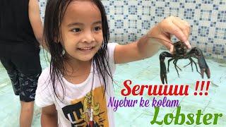 Serunya Nyebur ke Kolam Lobster | Zara Menangkap Lobster dan Ikan | Melatih Keberanian Anak
