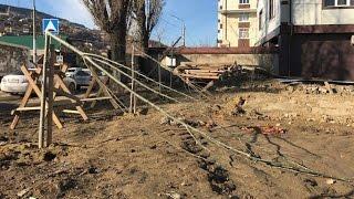 Махачкала: деревья, посаженные днем, вырубили среди ночи