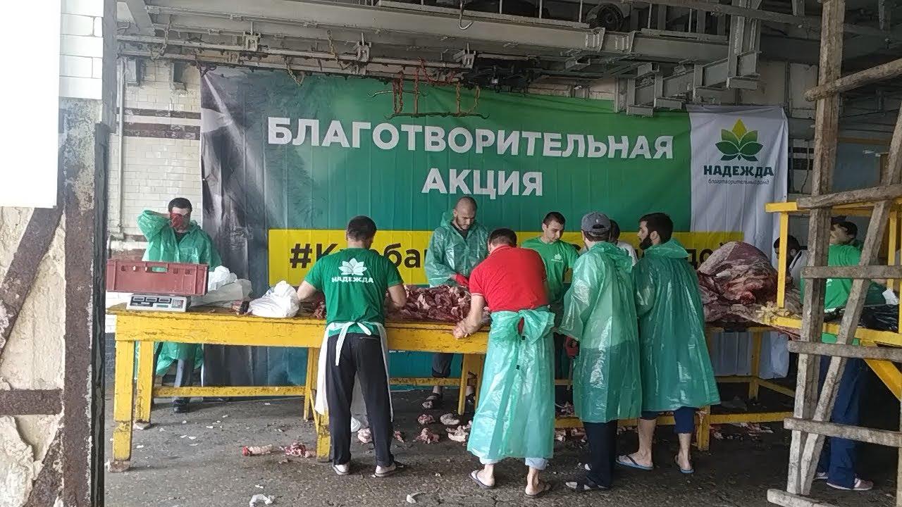 """Курбан-байрам с """"Надеждой"""" - благотворительность в промышленных масштабах"""