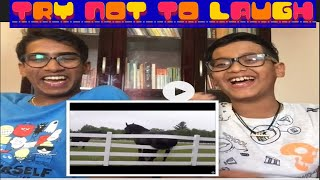 TRY NOT TO LAUGH CHALLENGE (with Krshna)