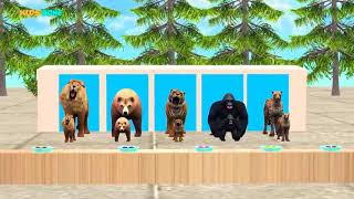 Wrong kid matching game __ Lion tiger gorilla bear