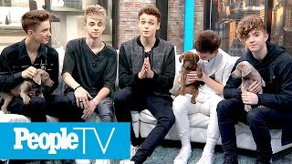 Why Don't We Surprised With Puppies, Talk Jake Paul, What They Look For In A Girl & More   PeopleTV