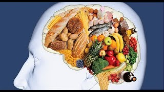 How Foods Affect your Brain Amazing BBC Documentary