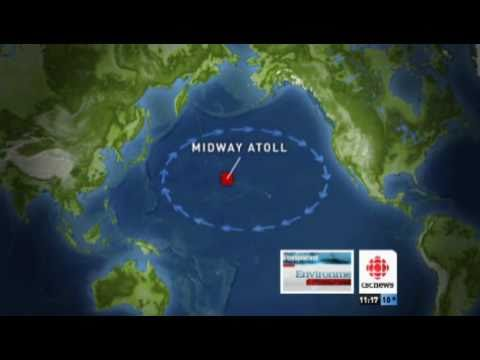 Ocean of Garbage   CBC