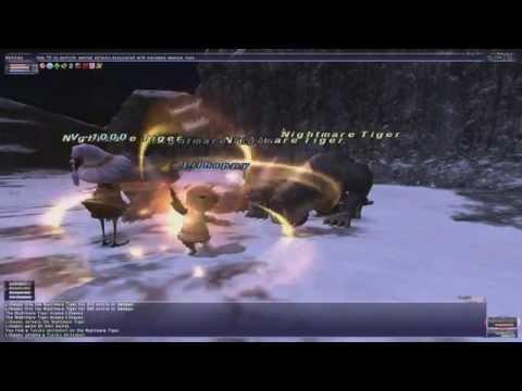 Lets Play FFXI Part 37 - Dynamis - Qufim Part 1