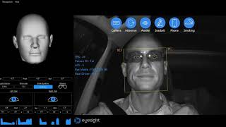 Driver Monitoring System (DMS) in Action