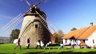 Musica Folklorica - Jam-para lui Petrescu