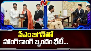 Hong Kong Based Intellgent Sez Ltd Team Meets CM Jagan..