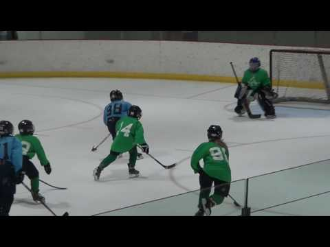 Week 7 Letang Highlights: 2016 Quest Hockey 4 on 4 Summer League