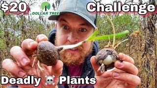 7 Day $20 Dollar Store Survival Challenge - Day 3 - Toxic Plants