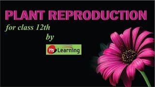 Plant Reproduction for XII Standard & Medical Entrance