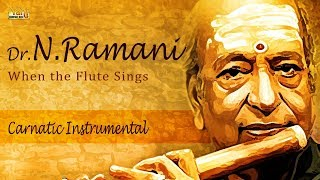 Evergreen Carnatic Instrumental Flute   Best Of Dr.N.Ramani   Classical Music   Thyagaraja