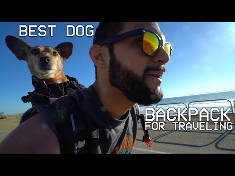 video Dog Carrier Backpack