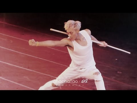 [fancam] 140711 EXO TLP in Taipei TAO 타오 タオ focus【Wushu solo】[chachaTAO]