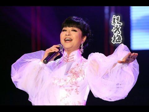 殷秀梅:那些年我们一起听过的歌  【中国文艺  20151125】720P