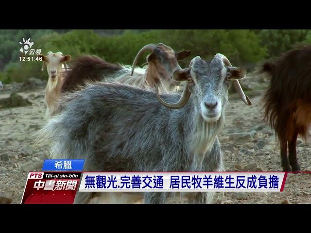 無觀光、完善交通 希臘小島牧羊維生反成負擔