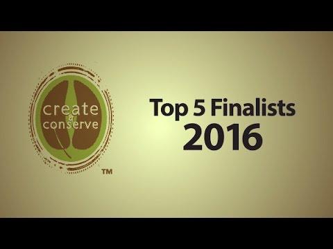 2016 Create & Conserve Winner: Glenn Stevens from Unity, Maine
