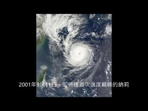 藤原效應3 颱風丹娜絲與颱風納莉(2001年)