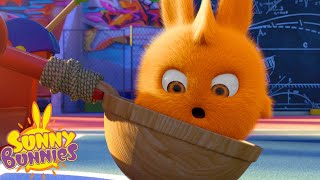 SUNNY BUNNIES - Jump Shot | Season 2 | Cartoons for Children