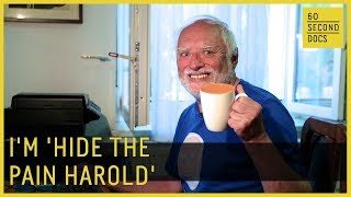 Who Is Hide The Pain Harold - the Internet's most famous meme?