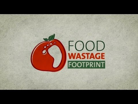 Global food waste