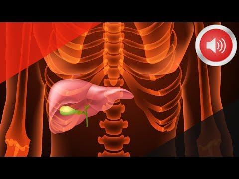 공포의 암 췌장암이 오기 1년 전 나타나는 증상들