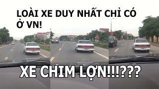 Loài xe duy nhất chỉ có ở Việt Nam - XE CHIM LỢN
