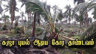 கஜா புயல் ஆடிய கோர தாண்டவம் நேரடி காட்சிகள்! | Cyclone Gaja live updates in Tamil