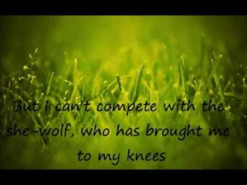 Baixar She Wolf (David Guetta Ft. Sia-Cover)- Luciana Zogbi & Gianfranco Cassanova-Lyrics