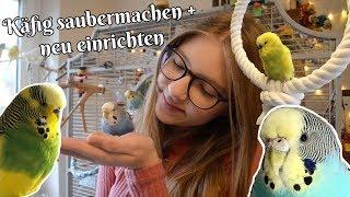 Vogelvoliere saubermachen und neu einrichten🥰🦜 Daily Vlog 08.12.2018