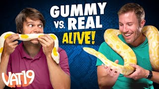 Gummy vs Real Challenge: LIVE ANIMAL edition!