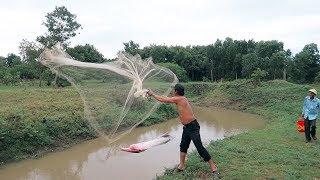 Thanh Niên Quăng Chài Bắt 1 Mẻ Cá Lớn Ở Con Suối Trong Rừng . Catching Fish By Using The Net
