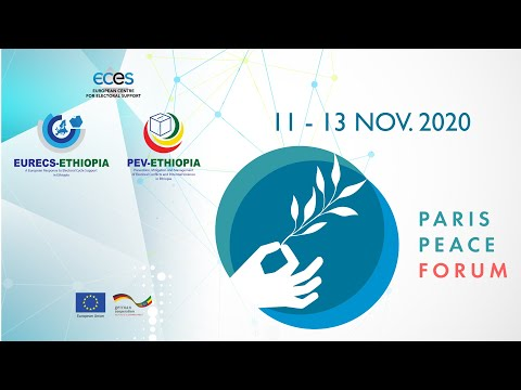 ECES Participation - Paris Peace Forum, 11 - 13 November 2020