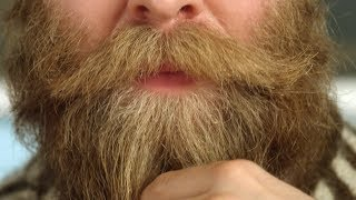 Why Portland and Iceland Love Beards