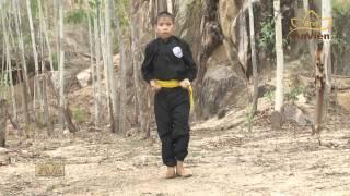 Vietnamese Martial Arts -  Binh Dinh Region Martial arts & Grandmaster Phi Long Vinh