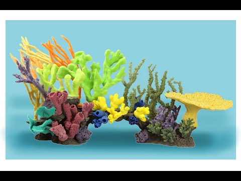 Creating Artificial Reef Insert