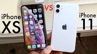 iPhone 11 Vs iPhone XS! (Comparison) (Review)
