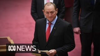 Entire parliament condemns Fraser Anning's controversial maiden speech   ABC News