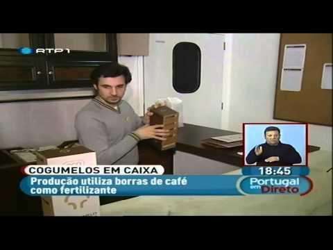 """Gumelo no """"Portugal em Direto"""" 07/03/2013"""